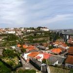 Gaia_Porto
