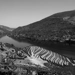 Grafismos do Douro