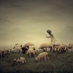 Sang Gembala