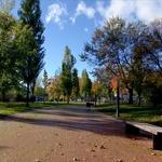 O Tabolado e ou Outono