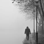 Junto rio numa manhã de nevoeiro