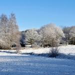 Em dia de nevada