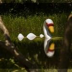 """Loch Ness """"O cisne do lago"""""""