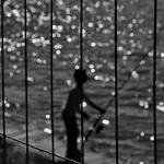 O Pescador Cintiliante