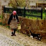 A Jovem E O Gato