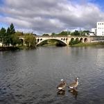 Rio Tâmega e os Patos