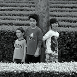 Os três traquinas___