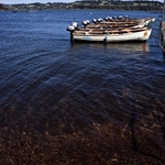 Barcos em descanso
