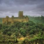 Castelo de Almourol -em dia de chuva