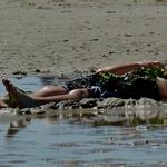 Relax, banho de areia e algas