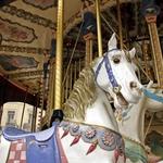 O cavalo do Carrossel!