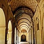 Museu das Belas Artes______Lyon