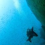Passeio Submerso