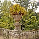 Jardim Botânico________Coimbra