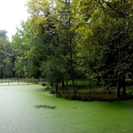 o lago verde