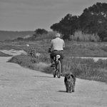 A pedaleira e o canito