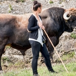 O touro e a pastora