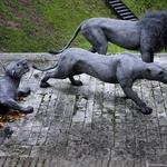 Animais na Torre de Londres