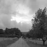 Country road Azores_