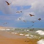 O mar enrola na areia___
