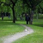 Passeio no Parque
