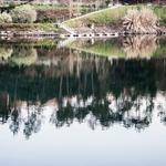 Reflexos de inverno no rio Tâmega