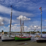 Barcos tradicionais do Tejo