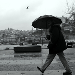 Walking in the rain___