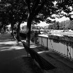 A Olhar o rio