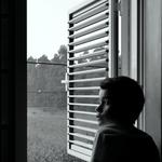 Na minha janela___