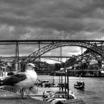 Mirando o Douro
