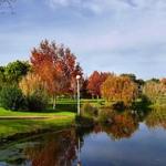 Como é lindo no Outono!!
