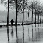Dias de chuva___