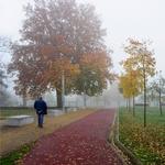 Ainda o Outono
