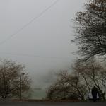 Outono nos Açores .