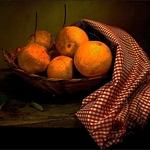 Esboço com laranjas