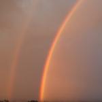 Rainbow seen from my window___
