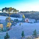 Manhã de inverno com geada