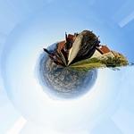 Monsanto no Mundo_
