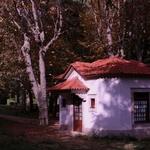 Parque Palace Vidago