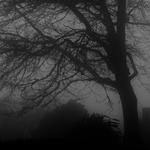 Numa manhã de Outono nas ilhas de bruma .
