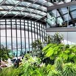 Jardins interiores no Sky Gardens