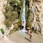 ___ Parque Nacional de Ein Gedi ___