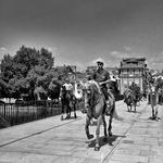 Cavalos na Ponte