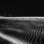 Dunas- Dia mundial da Fotografia
