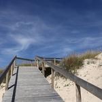 Pelas dunas