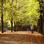 Jardim Botanico de Coimbra