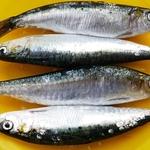 Vamos ficar sem sardinha ?