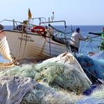 Vida de pescador não é só no mar!