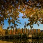 Outono à beira rio!!